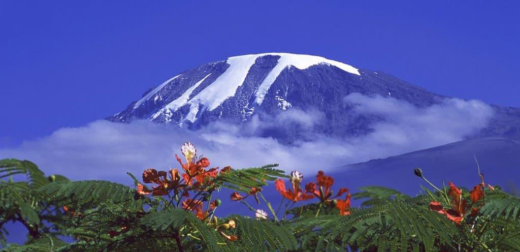 Mt. Kilimanjaro - Tanzania