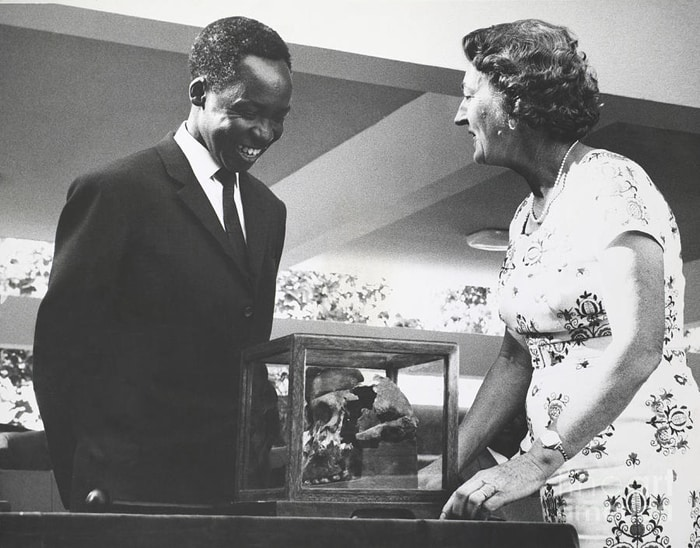 "Mary Leakey and Julius Nyerere, President of Tanzania. in skull presentation ceremony of one of the hominid finds at Oldupai Gorge. Leakey designated this find as Zinjanthropus and nicknamed it ""Nutcracker Man"" because of its massive jawbone."