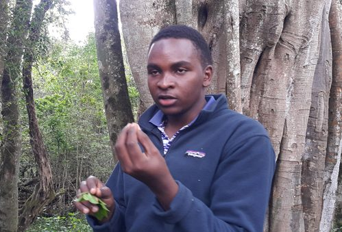 Cyril lectures on indigenous trees of the mountain forest.